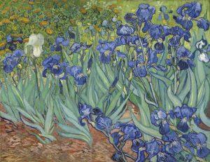 Vincent-van-Gogh-Iris-1889-300x231 VALORE QUADRI E D'OGNI OGGETTO